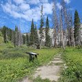 A look up the trailhead if traveling clockwise from Lake Marie parking lot.- Medicine Bow Peak Loop