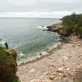 Overlooking Monument Cove on Ocean Path. - Acadia National Park