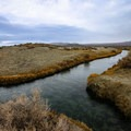 The pond at Trego Hot Springs is actually a ditch dug by hand.- Hot Springing Across Nevada
