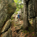 Hiking an extension of Gorham Mountain Trail.- 10 of Acadia National Park's Best Day Hikes