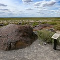 Petroglyphs lie along the easy trail inside Grimes Point Archaeological Area.- Adventuring across Nevada's Highway 50