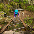 Part of the climb to Beech Cliff Trail.- 10 of Acadia National Park's Best Day Hikes