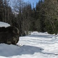 Large boulder on the route.- 22 Must-do Snowshoe Trails in the West