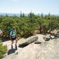 The trail climbs moderately along the ridge.- Cadillac Mountain South Ridge Trail