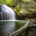 Stinging Fork Falls is one of the many tucked-away gems on the Cumberland Trail.- Hidden Gems in Tennessee's Beautiful State Parks