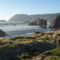 An expanse of dunes and grass lie on the edge of Myers Creek Beach.- Oregon's 16 Best Beaches