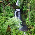 Curly Creek Falls.- 30 Must-See Waterfalls + Hikes in Washington