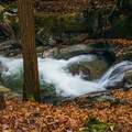 Take in Vermont's beautiful fall foliage as you take a short walk through the woods to Honey Hollow Falls. - 15 Stunning Photos to Inspire a Fall Trip to New England