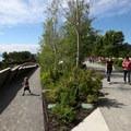 Olympic Sculpture Park.- Seattle's 16 Best Kid-Friendly Adventures