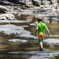 Bring your water shoes and explore the many creeks and water areas in Falls Creek Falls State Park.- Three Steps to Creating a More Accessible Outdoors for Kids
