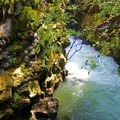 The water is deep and churning at the narrowest points in the Rogue Gorge.- 20 Great Fall Hikes in Oregon