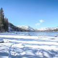 Snowshoe trail near Donner Lake.- From Summit to Sea: Catching California's Winter Waves