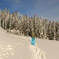 Snowshoeing back down to Barlow Pass Sno-Park.- Snowshoeing on Mount Hood