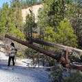 High pressure water monitors were once used to blast the hillsides in search of gold. Malakoff Diggins State Historic Park.- Examining The Sacramento Watershed: An In-Depth Look At The Issues