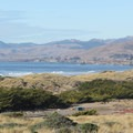 Bodega Dunes Campground sits adjacent to South Salmon Creek Beach. A short walk through the dunes puts you on the beach. - Guide to Bay Area Camping