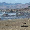 The view north from North Salmon Creek.- California's Best Beaches