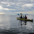 Paddling near Matia Island.- Kayaking in the San Juan Islands