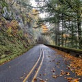 Fall colors on the Historic Columbia Gorge Highway on the way to Eagle Creek.- Eagle Creek Hike to Tunnel Falls