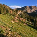 A beautiful stretch of the Catherine's Pass Trail.- A Weekend in Little Cottonwood Canyon