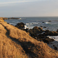 Trails at Gerstle Cove.- Camping on the Northern California Coast