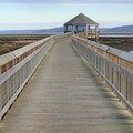 End of the estuary boardwalk at the Nisqually Wildlife Refuge.- Unforgettable National Natural Landmarks