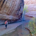 Entering the narrower sections of Coyote Gulch.- Hole in the Rock Road