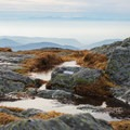 The summit of Camel's Hump.- Outdoor Project Staff Picks: 10 Favorite Hikes in New England