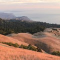 An autumn sunset in Mount Tamalpais State Park lights up the grassy hillsides like gold.- State Parks You Can't Miss