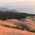 An autumn sunset in Mount Tamalpais State Park lights up the grassy hillsides like gold.- 10 Microadventures Near San Francisco