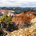 Incredible views from Rainbow Point.- Bryce Canyon National Park