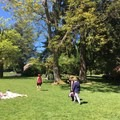 Volunteer Park picnic area.- Adventure in the City: Seattle