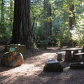 Typical campsite beneath the redwoods (Sequoia sempervirens) in Jedediah Smith Campground.- Camping on the Northern California Coast