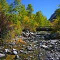 A creek passes through Thomas Canyon Campground.- Summer 2016 Awards + Prizes Announced