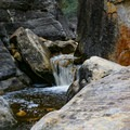 Creek flow necessitates some rock-hopping and bushwhacking to get up the canyon.- Ice Box Canyon