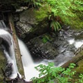 Triple Creek Falls is a small and beautiful series of cascades.- Mountain Loop Highway Itinerary