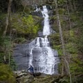 Fern Branch Falls is a 40-foot waterfall located on the Porters Creek Trail.- Great Smoky Mountains National Park
