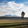The San Francisco Peaks, also known as the Kachina Peaks, loom north of town.- Weekend Adventure Guide to Flagstaff, Arizona