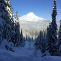 Views of Mount Hood and blue sky on the way to the White River Hut.- 10 Beautiful Cross-Country Ski Trails