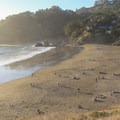 Muir Beach.- Beat the Heat: 20 Summer Escapes Near San Francisco