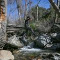 The hike requires several creek crossings.- 10 Best Waterfall Hikes Near Los Angeles