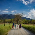Take a stroll down Sparks Lane in Cades Cove, Great Smoky Mountains National Park.- Kid-Friendly Hikes in Great Smoky Mountain National Park