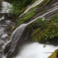 Upper Panther Creek Falls.- Waterfalls on the Washington Side of the Columbia River Gorge