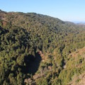 Valley View in Pfeiffer Big Sur State Park.- The Best of Big Sur: Hiking, Camping, Beaches, and Waterfalls