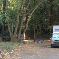 Pfeiffer Big Sur State Park Campground in northern Big Sur.- Guide to Bay Area Camping