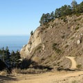 Partington Cove Trail in Julia Pfeiffer Burns State Park.- The Best of Big Sur: Hiking, Camping, Beaches, and Waterfalls