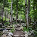 The Rainbow Falls trail has recently been restored by the National Park Service Trails Forever Crew. Restoration will be completed at the upper end of the trail in November of 2018.  - Rainbow Falls Trail via LeConte Creek