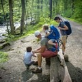 You'll find plenty of benches to take breaks along the Little River Trail.- Great Smoky Mountains National Park