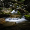 A stream running through the Rainbow Falls area of the Smokies. - Rainbow Falls Trail via LeConte Creek