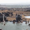 Bathers are surrounded by colorful scenery.- Must-Visit Hot Springs in Iceland