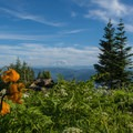 Mount Rainier viewed from Mount Washington.- 10-mile Hikes You Can't Miss